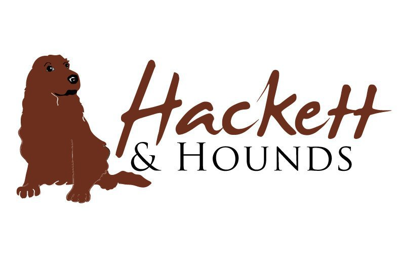 Hackett & Hounds Van Conversion
