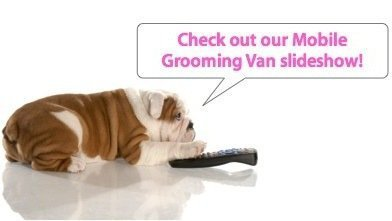 Check out our Mobile Grooming Van slideshow