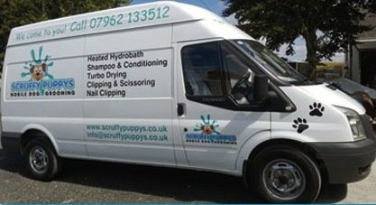Scruffy Puppys Van Conversion